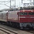 Photos: #3275 EF81 98+マニ50 2186 2018-7-26