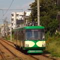 #3417 東急世田谷線デハ301AB 2018-9-17