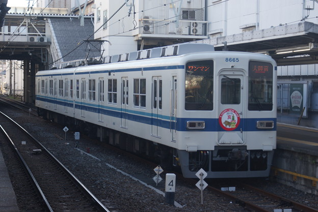 #3779 東武鉄道8565F@クハ8665 2019-1-2