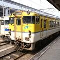 Photos: #3923 クモハ115-553・キハ40 2081 2008-3-25