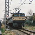 Photos: #4022 JR貨物EF65 513 1988-4-3