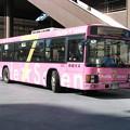 Photos: #4134 京成バスE222 2009-2-1