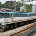 Photos: #5202 JR貨物EF65 1051 2003-7-24
