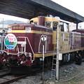 Photos: #5644 わたらせ溪谷鐵道DE10 1537 2006-10-28