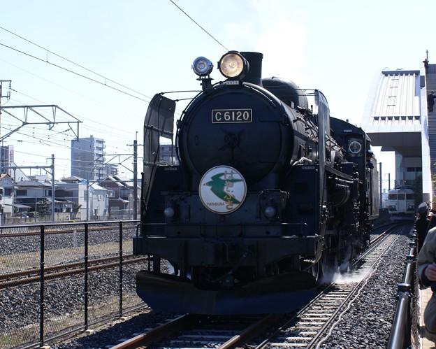 #6121 C61 20 2011-3-5