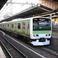 #6145 山手線E231系 東トウ543F 2010-1-5