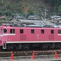 Photos: #7158 秩父鉄道デキ504 2020-8-1