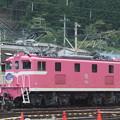 Photos: #7159 秩父鉄道デキ504 2020-8-1