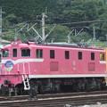 Photos: #7160 秩父鉄道デキ504 2020-8-1
