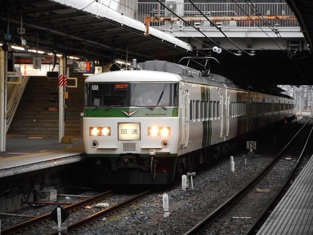 Photos: #7312 185系 宮オオA5F 2016-3-16