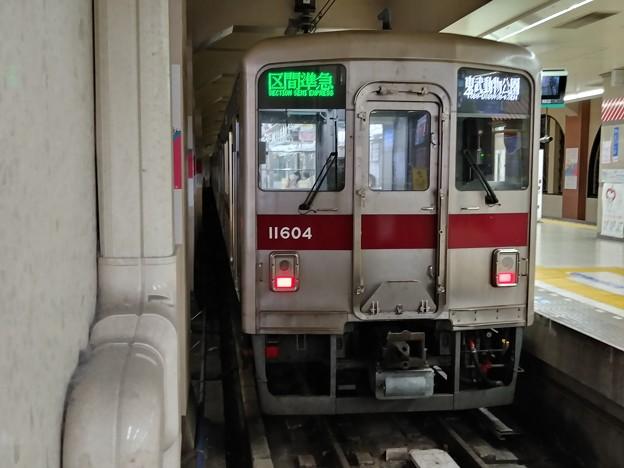 Photos: #7591 東武鉄道11604F 2020-11-25