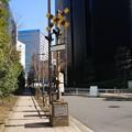 Photos: #8070 旧浜離宮前踏切 2021-2-20