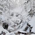 Photos: 冬の滝