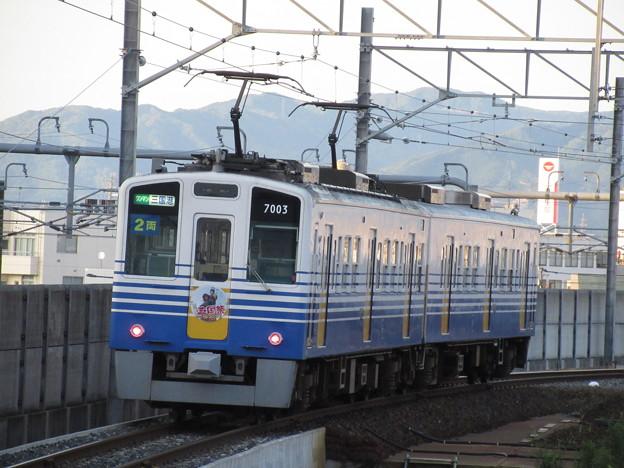 写真: えちぜん鉄道 7000形 Mc7003+Tc7004