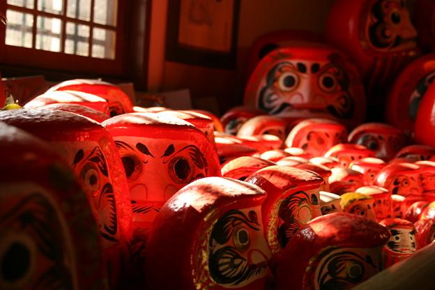 乃木神社の達磨