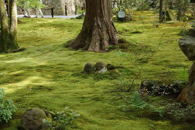 京都 大原三千院