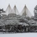 Photos: 金沢 兼六園 雪景色
