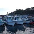呉市 倉橋町鹿島 漁船と段々畑