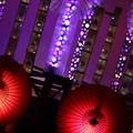 Photos: 灯の競演