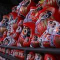 Photos: だるま寺