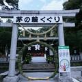 Photos: 玉村八幡宮
