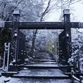 Photos: 岐阜城へ