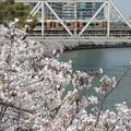 Photos: 大阪環状線 新たな時代へ♯1