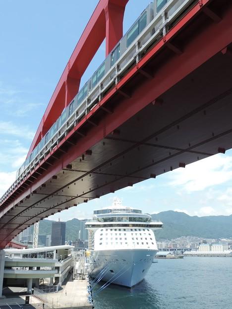 Photos: 豪華客船の近くで…