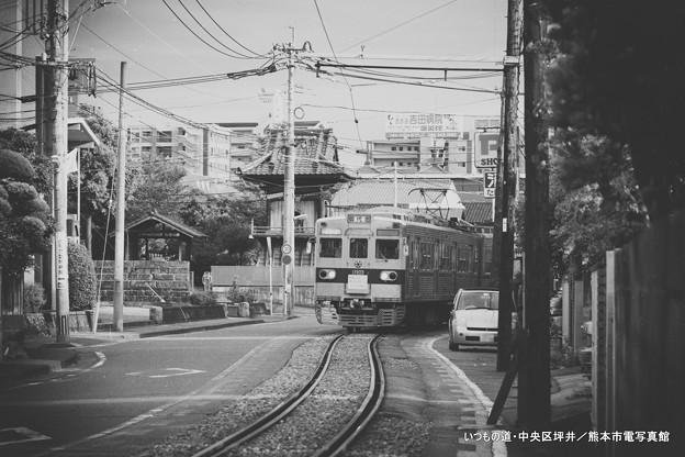 写真: いつもの道。