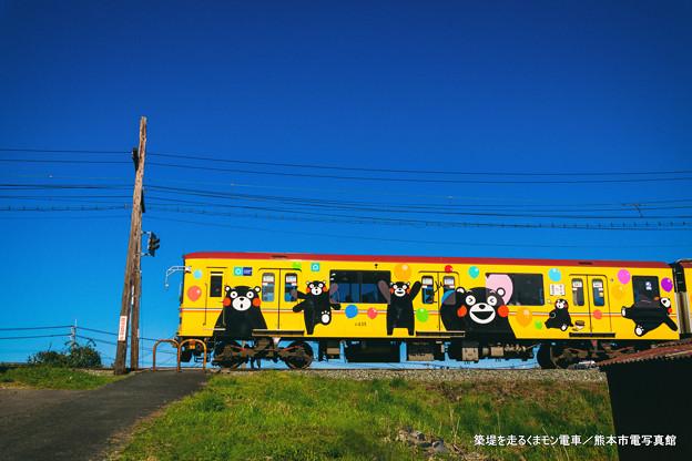 写真: 築堤を走るくまモン電車。