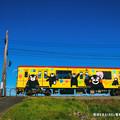 Photos: 築堤を走るくまモン電車。