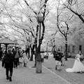 街角の花嫁
