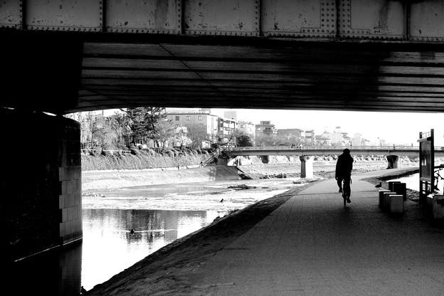 写真: 僕の進む道