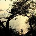 Photos: 琵琶湖の釣り人