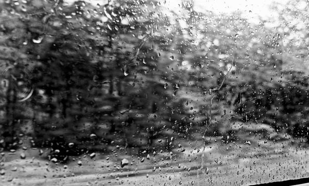 雨の車窓から
