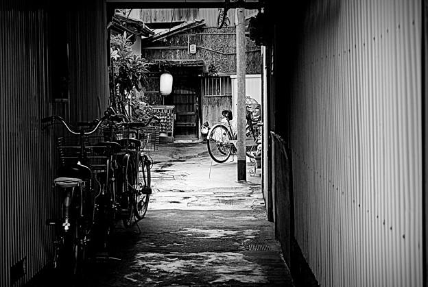 Photos: 雨宿りの路地