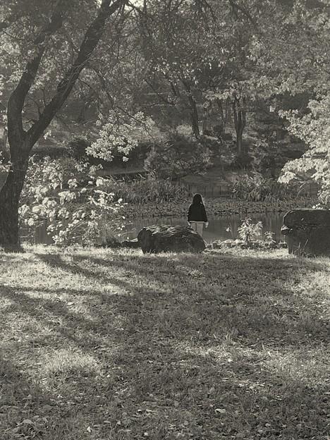 秋の日の少女