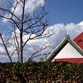 教会の赤い屋根