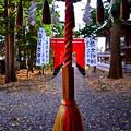 Photos: 稲荷大明神