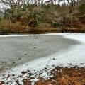 写真: 長谷池9