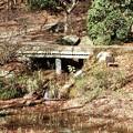 長谷池注水5