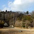 天津の森1