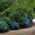 長谷池周遊路1