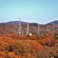 Photos: 山の黄葉1