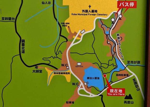Photos: 再度公園案内図 大
