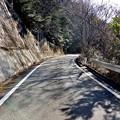Photos: 遊歩道