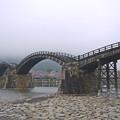 桜の錦帯橋。曇り・・・(22)