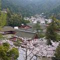 千畳閣からの眺め(1)