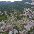 千畳閣からの眺め(3)
