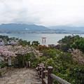 平松茶屋からの眺め(1)